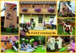 Postkarte_kraus_Seite_1